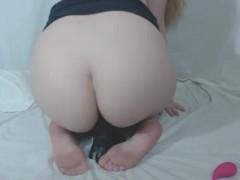 pussy_2062723