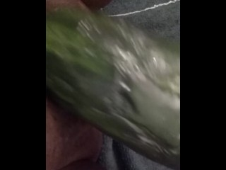 Shoving a Cucumber in my fat pussy