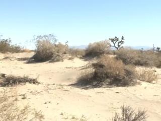 Jennifer White gets filthy in the desert