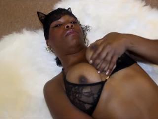 DREAM CATCHER PUSSY CAT PURR