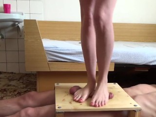 The Adult Video Experience Presents Cock Trampling 4
