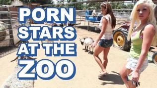 BANGBROS - Fuck Team Five Zoo Trip With Britney Amber, Mia Lelani & Angel Vain