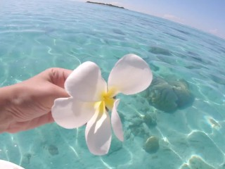 Tahitian Princess of your dreams gets hard and deep anal - Danika Mori Vacations