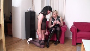 female domination convolut by femdomaustria